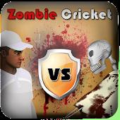 Bheem and Krishna Cricket