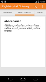 English to Hindi Dictionary Screenshot 8