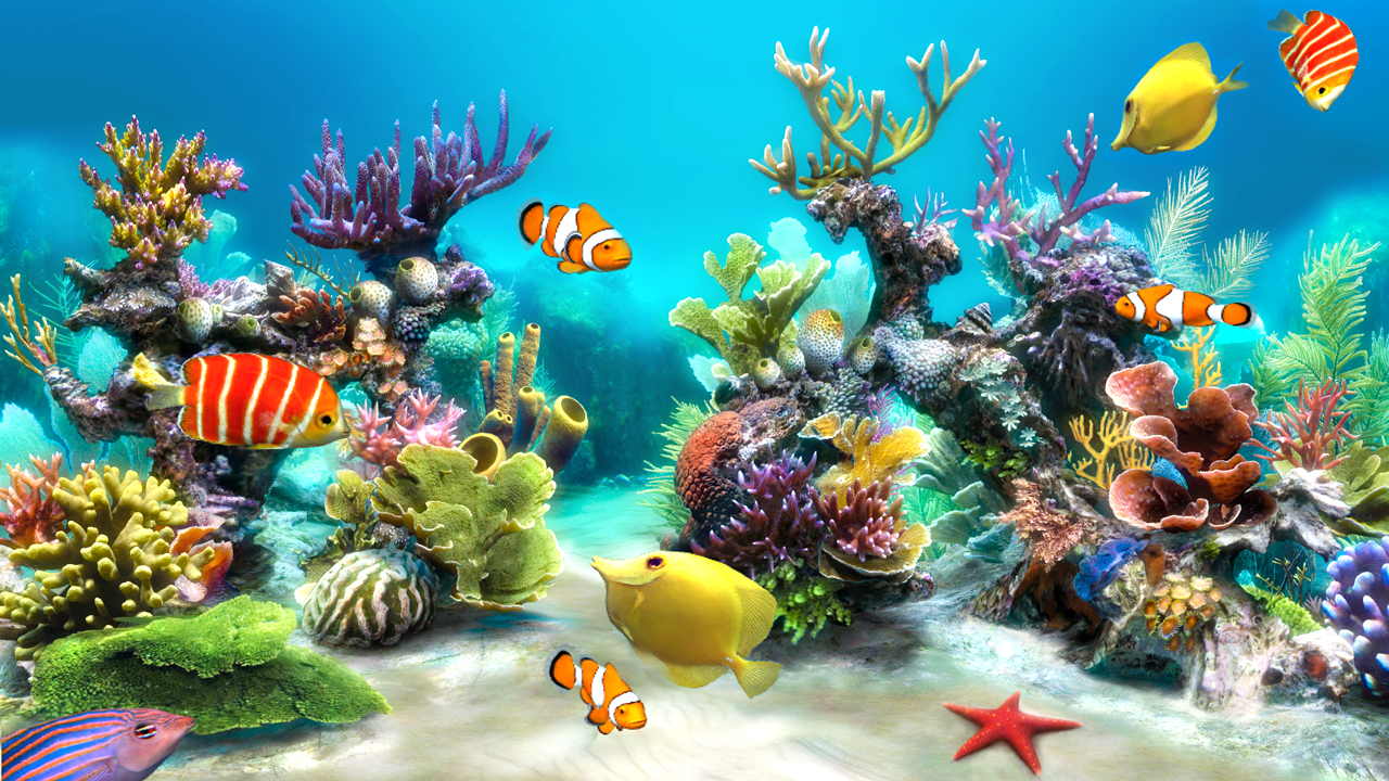 Sim aquarium live wallpaper android apps on google play for Live wallpapers