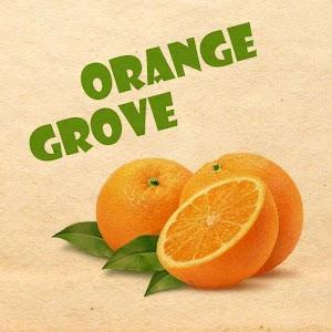 Orange Grove Test