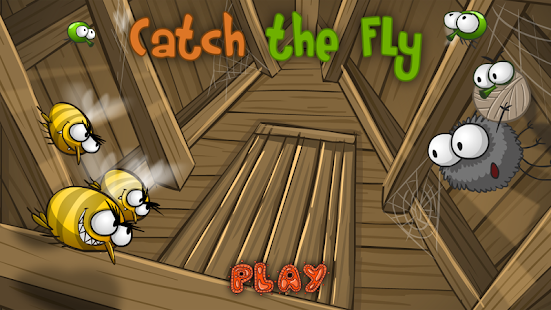 Catch the Fly