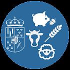 Lonja de Salamanca icon