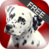 About Dog Breeds (Free)