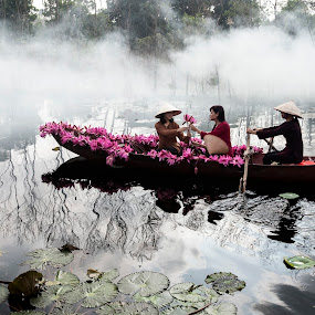Fog and flower by Nguyen Thanh Cong - Uncategorized All Uncategorized ( chua huong, nguyen thanh cong, waterscape, fog, vietnamese, vietnam, landscape, people, flower, hoa sung )