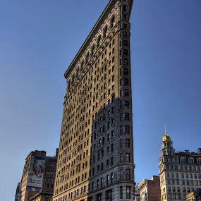 Flatiron Building by Ward Vogt - Buildings & Architecture Office Buildings & Hotels ( building, fuller, architectural, nyc, new york, historical, flatiron, photography, ward vogt, city )