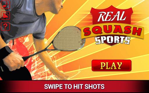 실제 스쿼시 스포츠 3D
