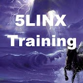Struggling In 5LINX Business