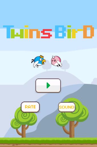 Twins Bird