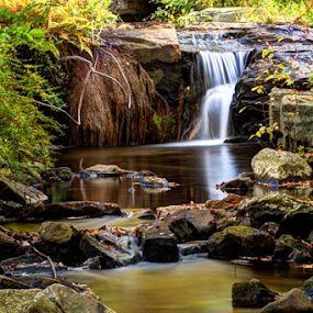 At Hickory Run State Park by Dave Martin - Landscapes Waterscapes (  )