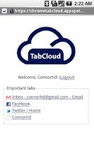Screenshot of TabCloud