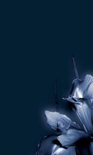 藍色的花朵壁紙