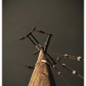 the wire by Gav Wyatt - City,  Street & Park  Skylines ( sky, pole, wood, electric, up )