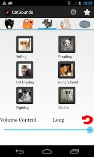 玩免費娛樂APP|下載貓的聲音免費 app不用錢|硬是要APP