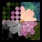 Imagica + icon