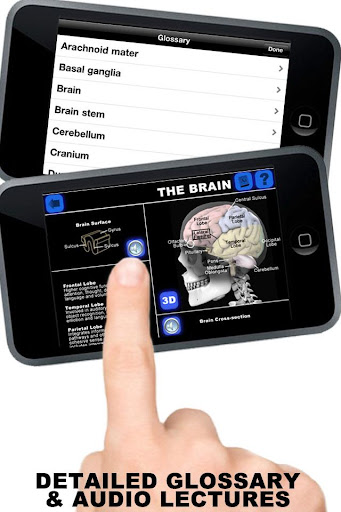 玩免費醫療APP|下載Anatomy 3D: Organs app不用錢|硬是要APP