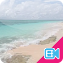 Beach Waves Live WallPaper icon