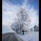 IMGP4684-Edit.jpg