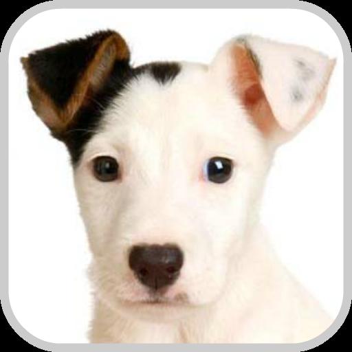 How To Draw Cute Dog Puppy 漫畫 LOGO-玩APPs