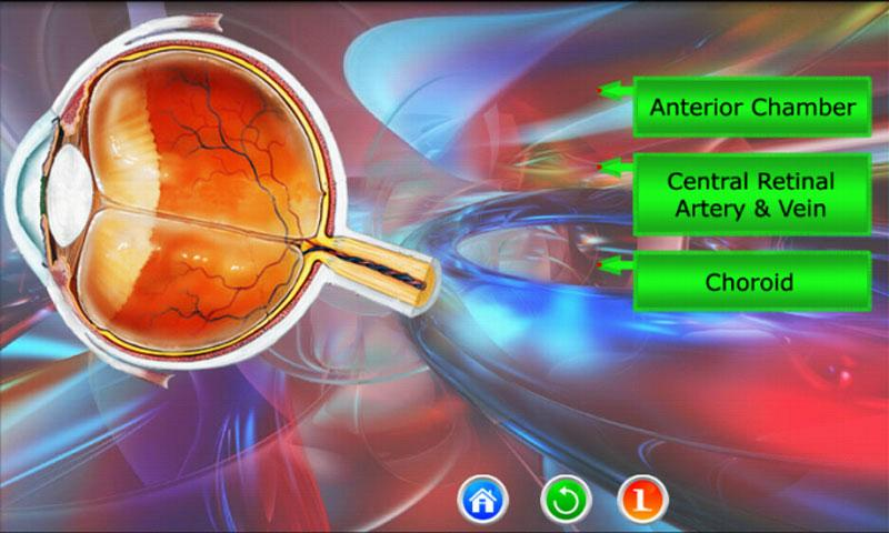 BioIQ: Biology Picture Game - screenshot
