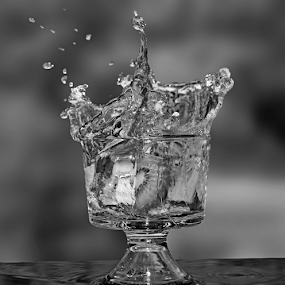 by Dipali S - Black & White Abstract ( cup, water, abstract, fruit, greyscale )