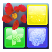Flick and Vanish Puzzle Game