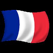 Fan Flag FR