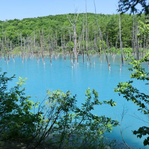 Blue pond in Hokkaido(JP037)