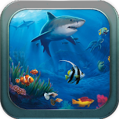 Underwater Sea Live Wallpaper