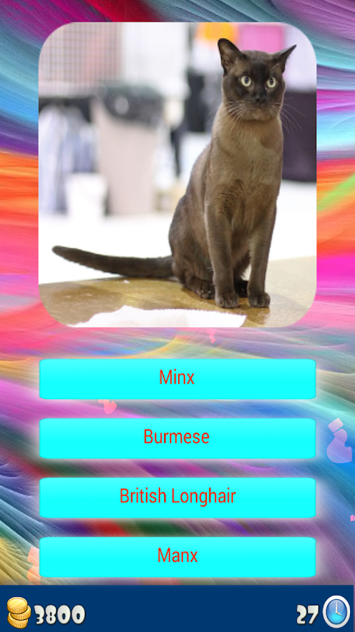 Cat Breeds   Identify Your Cat   Android Apps on Google Play