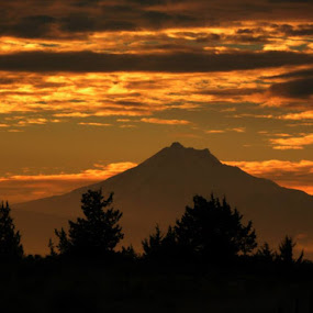 Mt. Hood Oregon by Traci Corwin - Landscapes Mountains & Hills