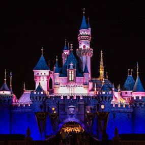 Sleeping Beauty's Castle by Nicole Nichols - City,  Street & Park  Amusement Parks ( nighttime, sleeping beauty castle, disneyland, castle,  )