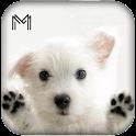 Name that Dog Breed Trivia icon