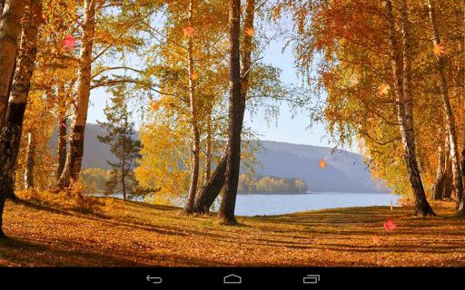 Autumn Wallpaper screenshots 17