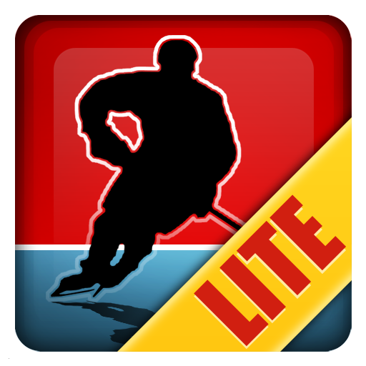 Magnetic Sports Hockey Lite