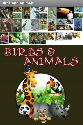 Birds And Animals - screenshot