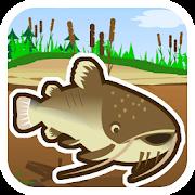 Cat fish Fry Fishing