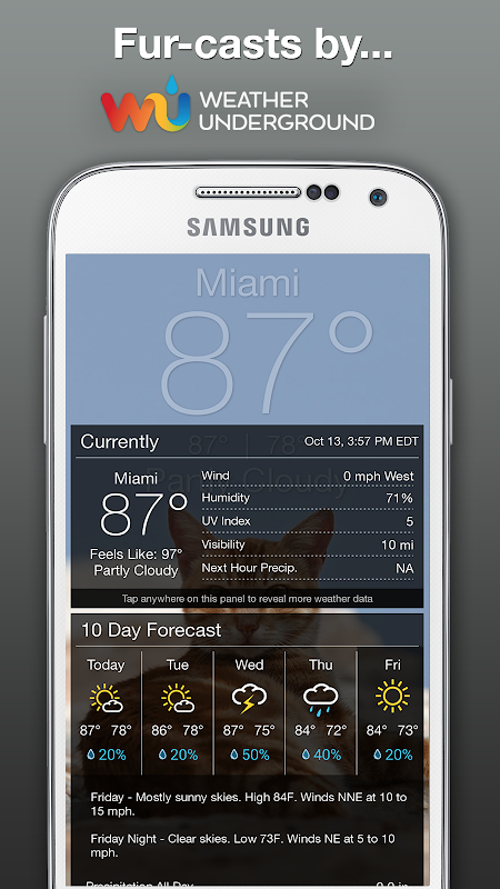 Weather Kitty - Forecast, Radar & Cat Pictures screenshots