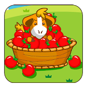Apple Catcher Mania