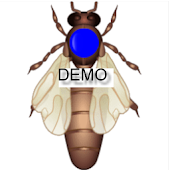Demo Imker-App-Pro