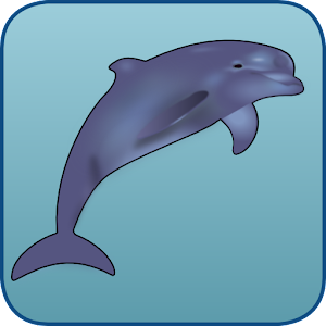 Dolphin Run for PC and MAC