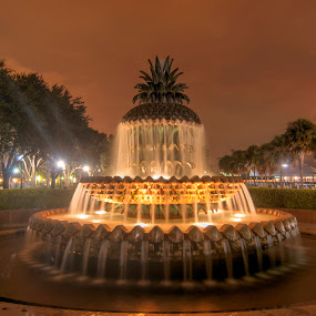 Pineapple Fountain by Cathie Crow - City,  Street & Park  Fountains ( charleston, night photography, park, hdr, fountains, fountain, hdr photography, south carolina, waterfront park )
