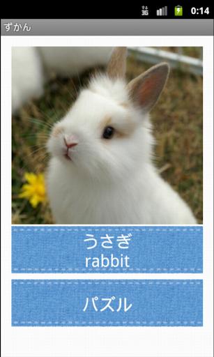 玩教育App|りすさんの動物図鑑lite りすさんシリーズ免費|APP試玩