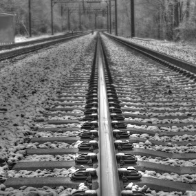 Permanent Way by Ward Vogt - Black & White Landscapes ( railing, black and white, railroad, photography, new jersey, railroad tracks, winter, railway, snow, denville, nj, permanent way, ward vogt )
