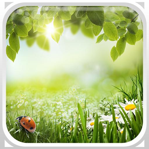 綠色春天動態壁紙 個人化 App LOGO-APP開箱王
