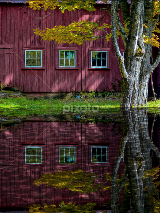 Three Windows by Janet Lyle - Buildings & Architecture Architectural Detail ( fall, reflections, windows )