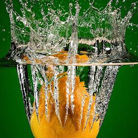 Splash by Troy Wheatley - Food & Drink Fruits & Vegetables ( water, orange, fruit, splash, drop, bubbles,  )