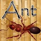 Ant Smasher Game icon