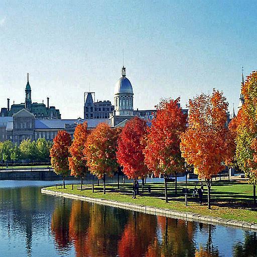 Montreal Map Tour LOGO-APP點子