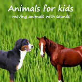Animals for kids with horses