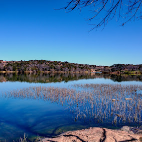Afternoon Delight by Robert Marquis - Landscapes Waterscapes ( afternoon delight, park, nature, color, colors, texas, parks, lakes, lake, landscapes, landscape )